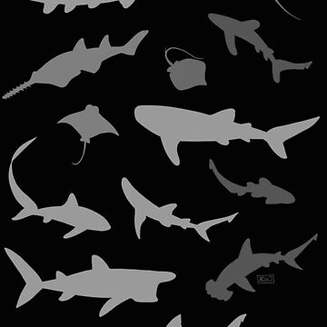 Sharks and Rays: Dark version! by jenrichards
