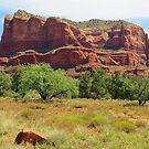Red Rocks at Sedona, Arizona by Alberto  DeJesus