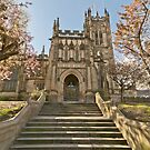 Manchester Cathedral and the Cherry Blossom by Stephen Knowles