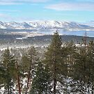 Lake Tahoe in the Winter by Jared Manninen