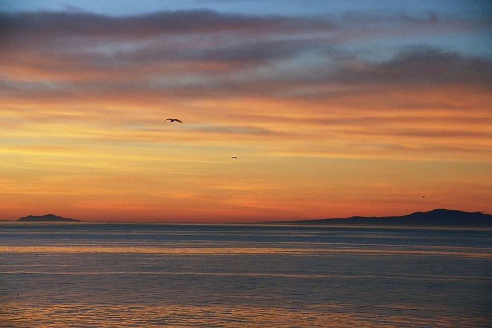Santa Barbara sunset by David Chesluk