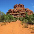 Path to Bell Rock, Arizona by Alberto  DeJesus