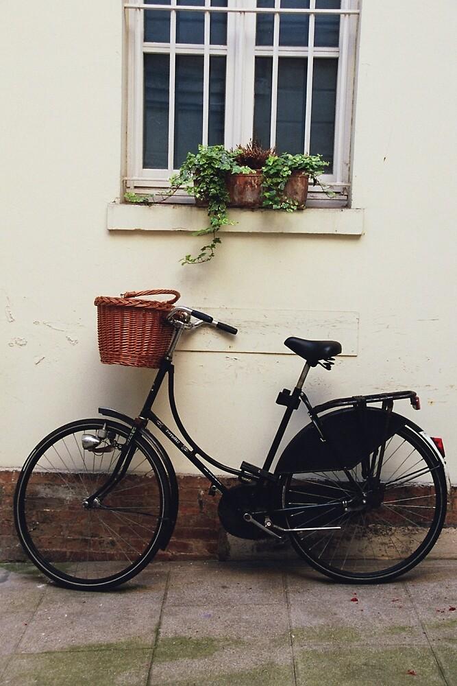 Paris bicycle by David Chesluk