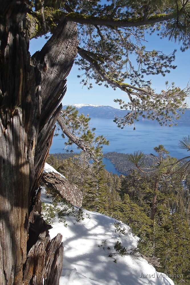 View From Maggie's Peaks by Jared Manninen
