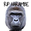 RIP HARAMBE by sailorlolita