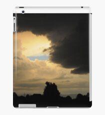 Layer Cake iPad Case/Skin