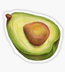 Avocado. color pencil Sticker