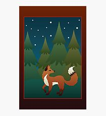 Forest Fox Photographic Print