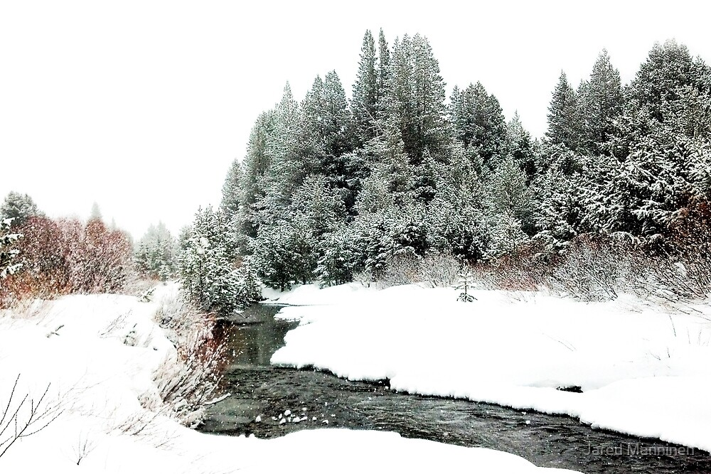 Snowy Upper Truckee River (photo a) by Jared Manninen