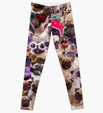 Pugs, pugs, pugs Leggings