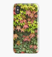 Lost in Autumn iPhone Case/Skin