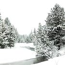 Snowy Upper Truckee River (photo b) by Jared Manninen
