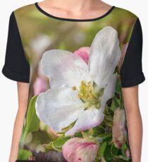 Apple blossom  Chiffon Top