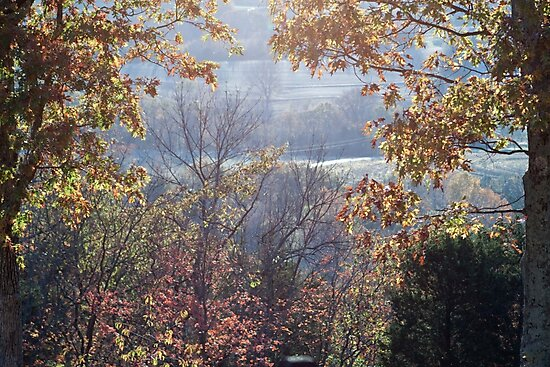 Valley - Looking through the Fog by Sherry Hallemeier