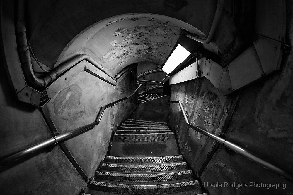 Down the rabbithole by Ursula Rodgers Photography