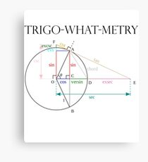 Trigonometry? Canvas Print