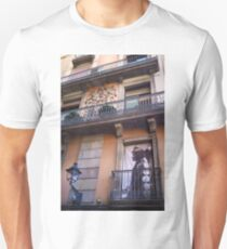 An Indian at the Window T-Shirt