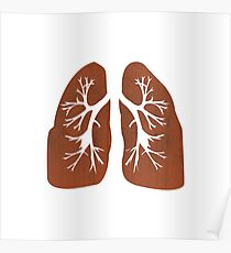 Lungs. Poster