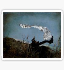 Wings of winter Sticker