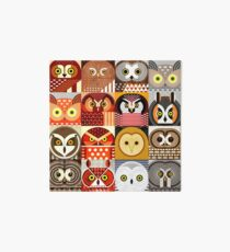 North American Owls Art Board