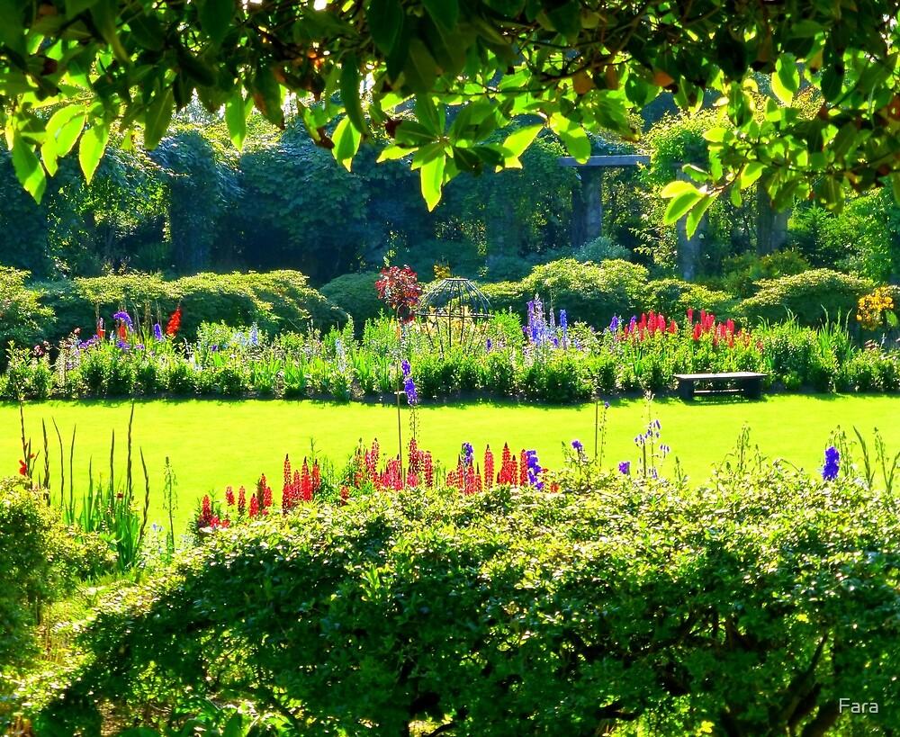 A Summer Garden in Ireland by Fara
