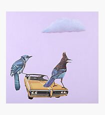 Two Jays and a Bonneville Photographic Print