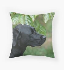 Chilli - a persimmon study Throw Pillow