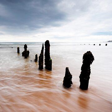 Sandsend - groynes by PaulBradley