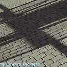 Shadow by Jeremy   Trickett.