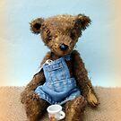 Handmade bears from Teddy Bear Orphans - Lawrence by Penny Bonser