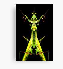mantis king Canvas Print