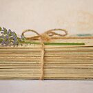Antique Post Cards by Evelyn Flint