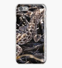 Leopard Lizard iPhone Case/Skin