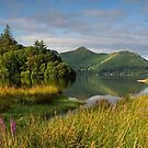 The Golden Hour at Derwentwater and Catbells in the English Lake District by Martin Lawrence
