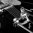 gretsch gone wild by tinncity