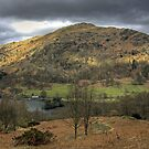 Rydal Water and Nab Scar by Tom Gomez