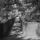 Walkway to James River Park by WeeZie