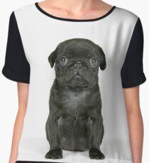 Cute Black Pug puppy Chiffon Top