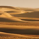 Sunswept sand along the Skeleton Coast by Owed To Nature