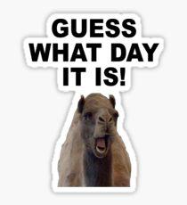 HUMP DAY Sticker