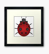 Red Ladybug Color Illustration Framed Print