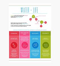 Water is Life Infographic Poster Photographic Print