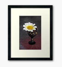 Daisy Still LIfe Framed Print
