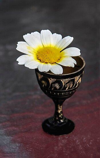 Daisy Still LIfe by Heather Friedman