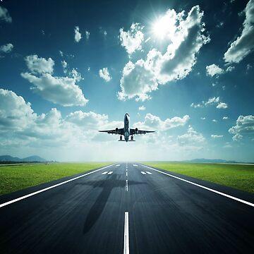 flying home by maya51