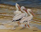 Hurricane Issac Pelicans by Phyllis Beiser