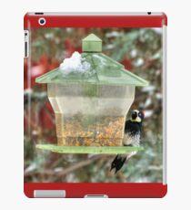 Acorn Woodpecker In Winter iPad Case/Skin