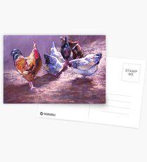 Pavarotti's Harem Postcards