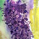 Buddleia by Val Spayne