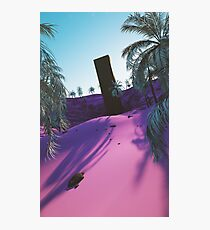 Palm King Photographic Print